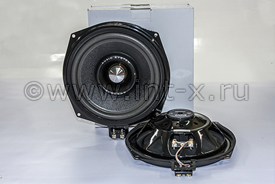 audio system x-08 bmw evo2
